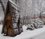 tols-zima1